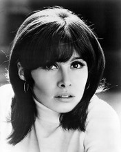 This is an image of Photograph & Poster of Stefanie Powers 198181