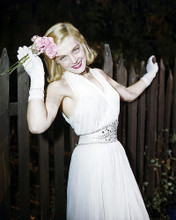 This is an image of Photograph & Poster of Lizabeth Scott 289640