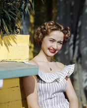 This is an image of Photograph & Poster of Jane Powell 289644