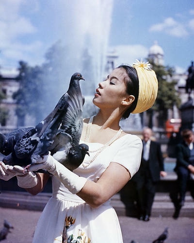 This is an image of Photograph & Poster of France Nuyen 289645