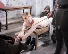 This is an image of Photograph & Poster of Peter O'Toole 289646