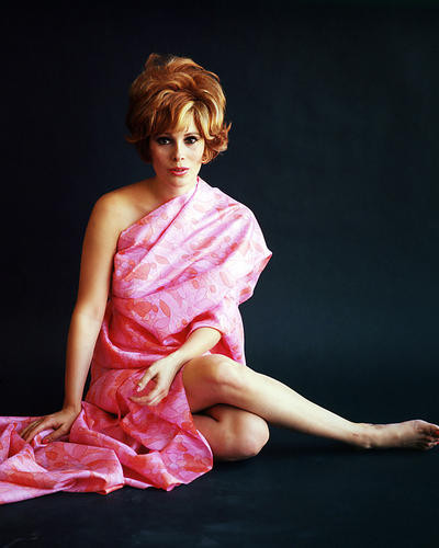 This is an image of Photograph & Poster of Jill St. John 289653
