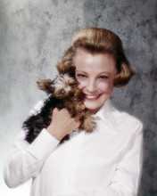 This is an image of Photograph & Poster of June Allyson 289664
