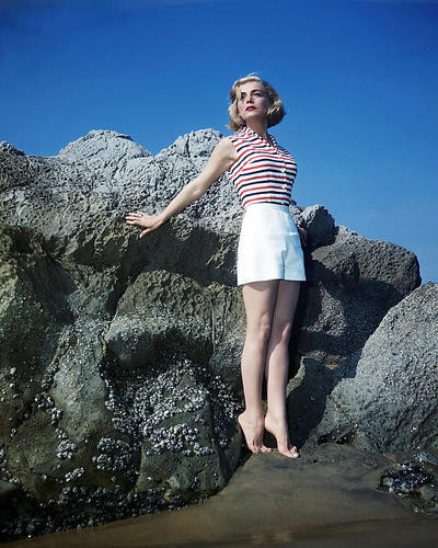 This is an image of Photograph & Poster of Lizabeth Scott 289666