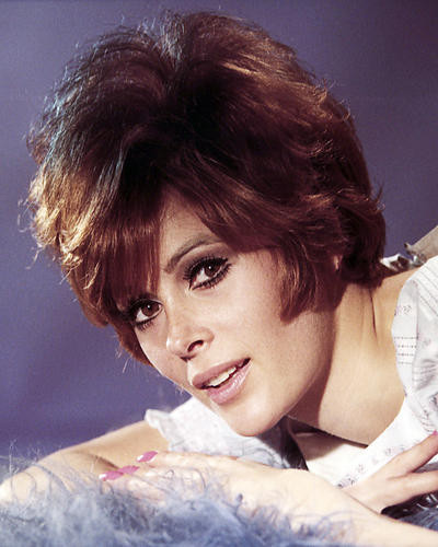 This is an image of Photograph & Poster of Jill St. John 289672