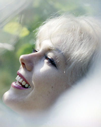 This is an image of Photograph & Poster of Kim Novak 289673