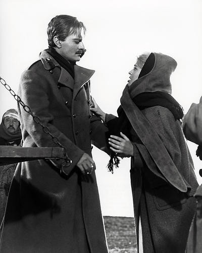 This is an image of Photograph & Poster of Doctor Zhivago 198358