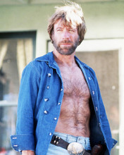 This is an image of Photograph & Poster of Chuck Norris 289856