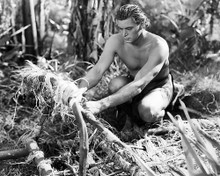 This is an image of Photograph & Poster of Johnny Weissmuller 198577