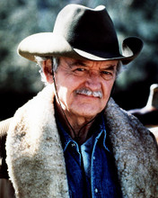 This is an image of Photograph & Poster of Hal Holbrook 292800
