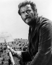 This is an image of Photograph & Poster of Eli Wallach 198835