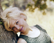 This is an image of Photograph & Poster of Susan Oliver 290056