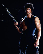 This is an image of Photograph & Poster of Sylvester Stallone 290065