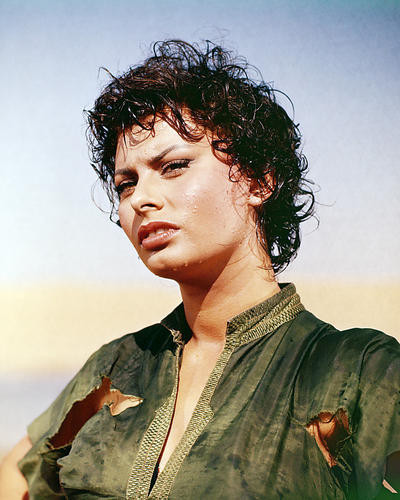 This is an image of Photograph & Poster of Sophia Loren 290075