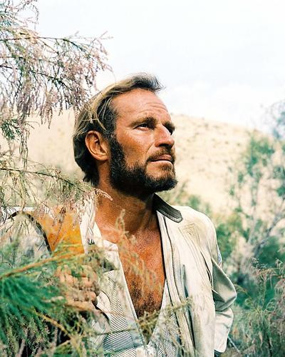 This is an image of Photograph & Poster of Charlton Heston 290144