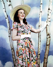 This is an image of Photograph & Poster of Deanna Durbin 290930