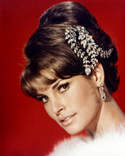 This is an image of Photograph & Poster of Raquel Welch 290348