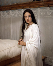 This is an image of Photograph & Poster of Olivia Hussey 290358