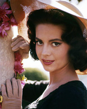 This is an image of Photograph & Poster of Natalie Wood 290414