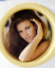 This is an image of Photograph & Poster of Raquel Welch 290417