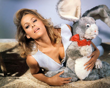 This is an image of Photograph & Poster of Ursula Andress 291107