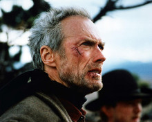This is an image of Photograph & Poster of Clint Eastwood 290529
