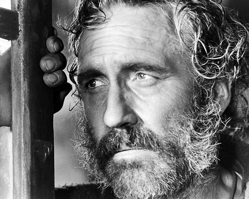 This is an image of Photograph & Poster of Jason Robards 199201