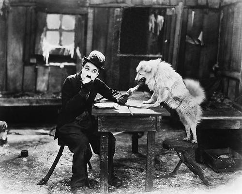 This is an image of 172189 Charlie Chaplin Photograph & Poster