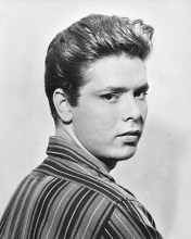 This is an image of 172269 Cliff Richard Photograph & Poster