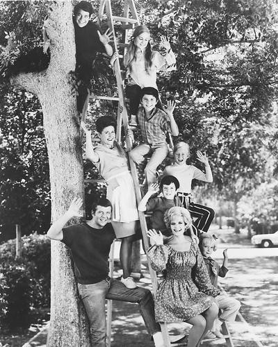 This is an image of 172446 The Brady Bunch Photograph & Poster