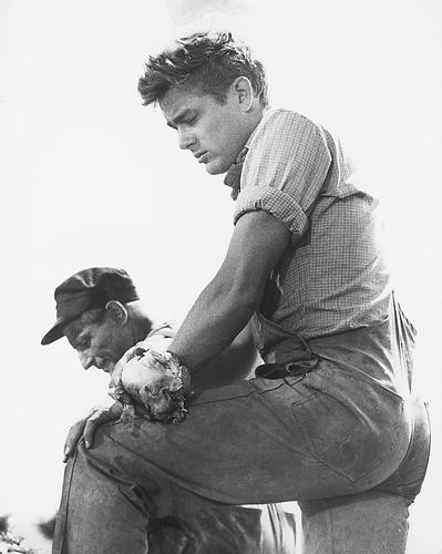 This is an image of 173987 James Dean Photograph & Poster