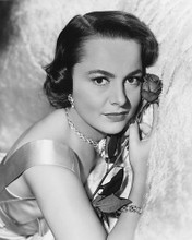 This is an image of 179133 Olivia De Havilland Photograph & Poster