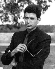 This is an image of 179605 Jeff Goldblum Photograph & Poster