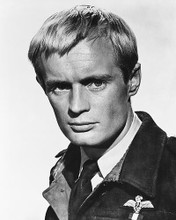 This is an image of 179841 David McCallum Photograph & Poster