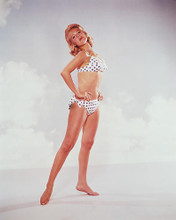 This is an image of 246004 Sandra Dee Photograph & Poster