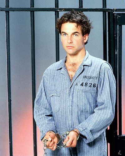 This is an image of 247769 Mark Harmon Photograph & Poster
