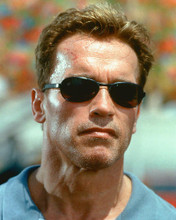 This is an image of 248319 Arnold Schwarzenegger Photograph & Poster