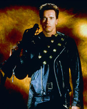 This is an image of 248970 Arnold Schwarzenegger Photograph & Poster