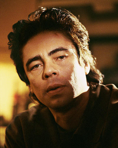 This is an image of 254956 Benecio Del Toro Photograph & Poster