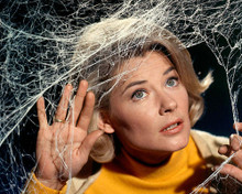 This is an image of 255728 Hope Lange Photograph & Poster