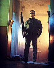 This is an image of 256556 Arnold Schwarzenegger Photograph & Poster