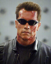 This is an image of 256557 Arnold Schwarzenegger Photograph & Poster