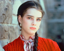 This is an image of 256863 Brooke Shields Photograph & Poster