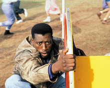 This is an image of 257436 Wesley Snipes Photograph & Poster