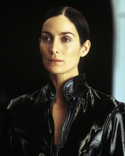 This is an image of 258665 Carrie-Anne Moss Photograph & Poster