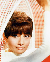 This is an image of 259442 Audrey Hepburn Photograph & Poster