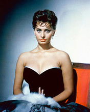 This is an image of 261267 Sophia Loren Photograph & Poster