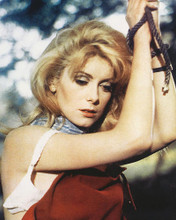 This is an image of 264987 Catherine Deneuve Photograph & Poster
