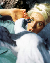 This is an image of 265013 Tippi Hedron Photograph & Poster