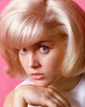 This is an image of 265046 Sue Lyon Photograph & Poster